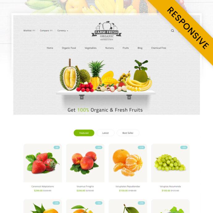 Organic Store Shopify Theme